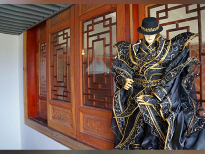 11月19日(六)19:30 【 諸羅山木偶劇團《天龍遊俠一生傳之蝴蝶夢》】